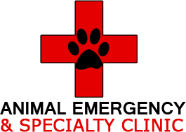 After Hours Clinics Near Cabot All For Pets Vet