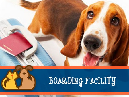 Pet Boarding Services